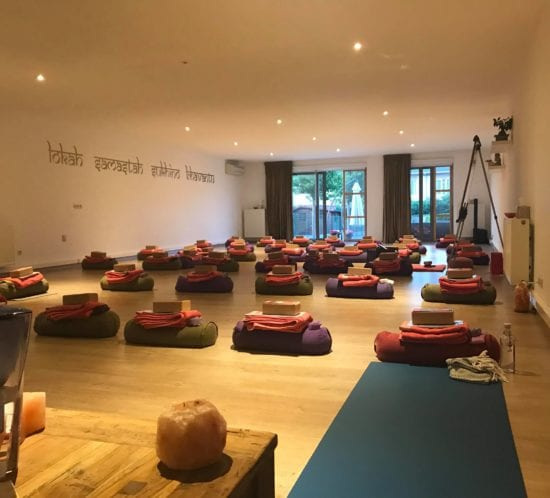 Yin Yoga Training Belgium with Mirjam Wagner August 2021